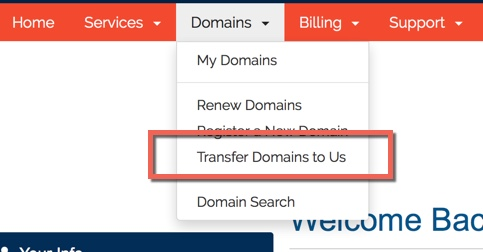 Transfer domain to us